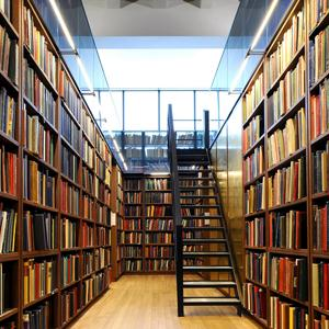 Библиотеки Чернушки