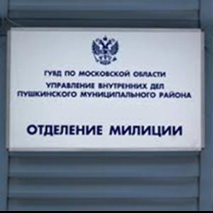 Отделения полиции Чернушки